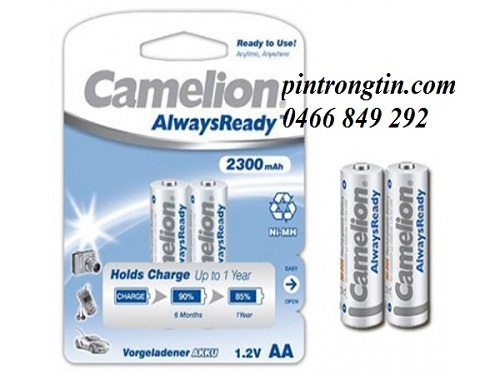 Pin Camelion