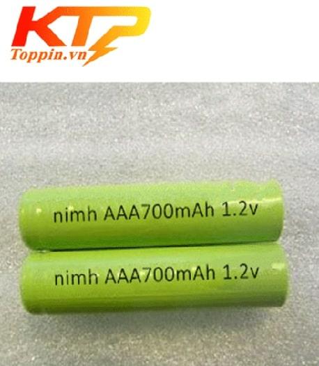 nimh-aaa700mah-12v
