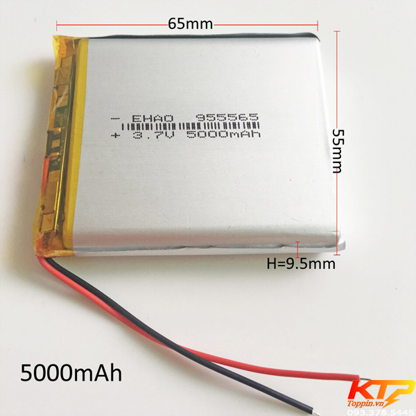 polymer-955565-5000mah-toppin